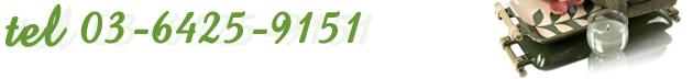 電話番号:03-6425-9151